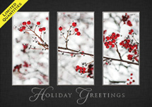 Windows of Beauty Holiday Greeting Cards